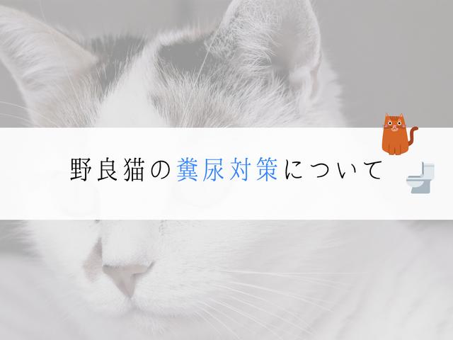 野良猫の糞尿対策タイトル
