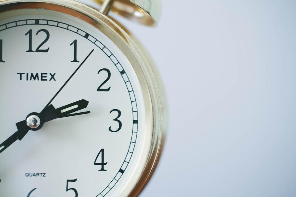 猫の習慣の変化を測っている時計