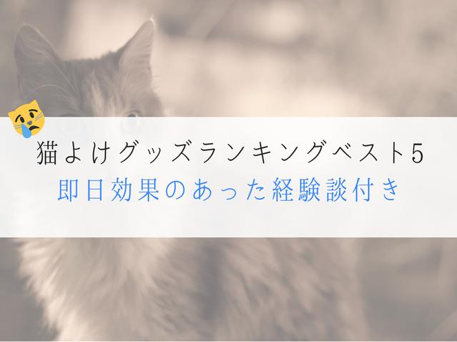 け 効果 絶大 猫 ブログ よ