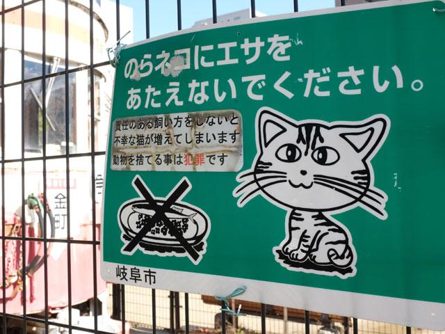 野良猫の看板