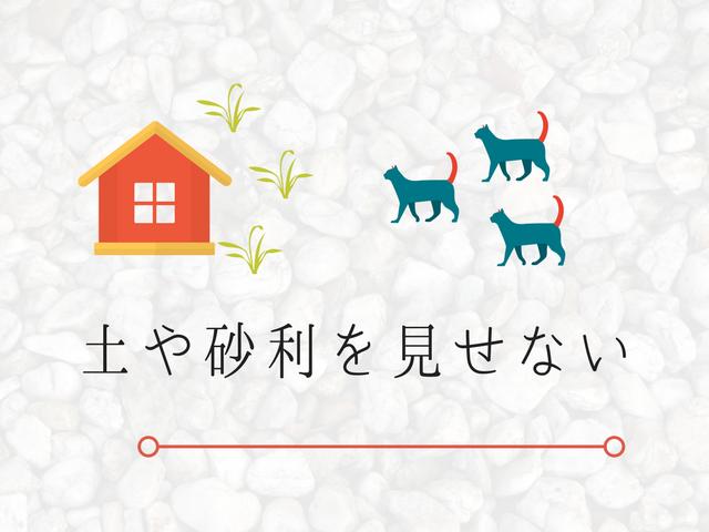 猫が大好きな砂利