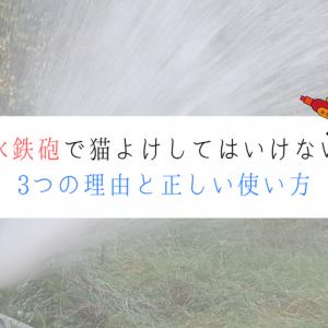 水を噴射するホース