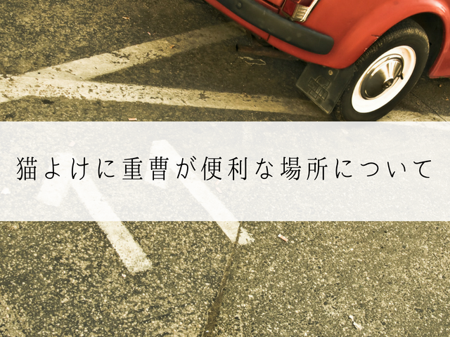 猫被害に苦しむ駐車場
