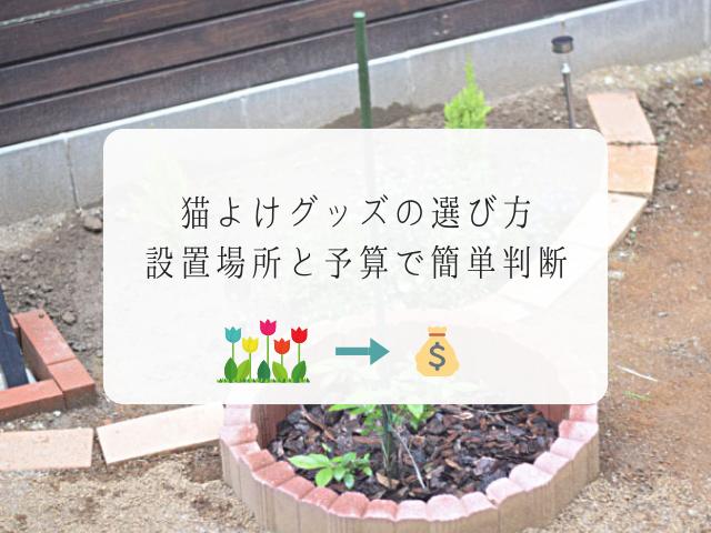 猫よけグッズを設置する庭