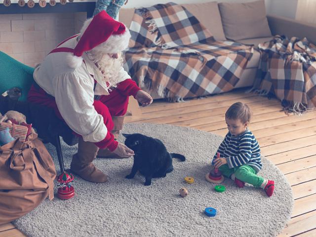 猫と赤ちゃんのいる家
